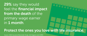 Infostat: Protect the ones you love with whole life insurance.